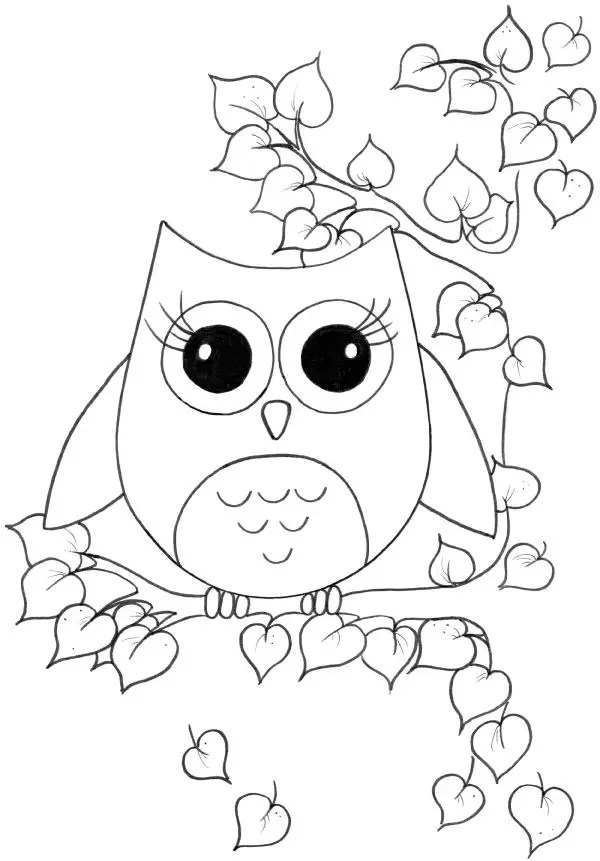 cute owl coloring page only coloring pages