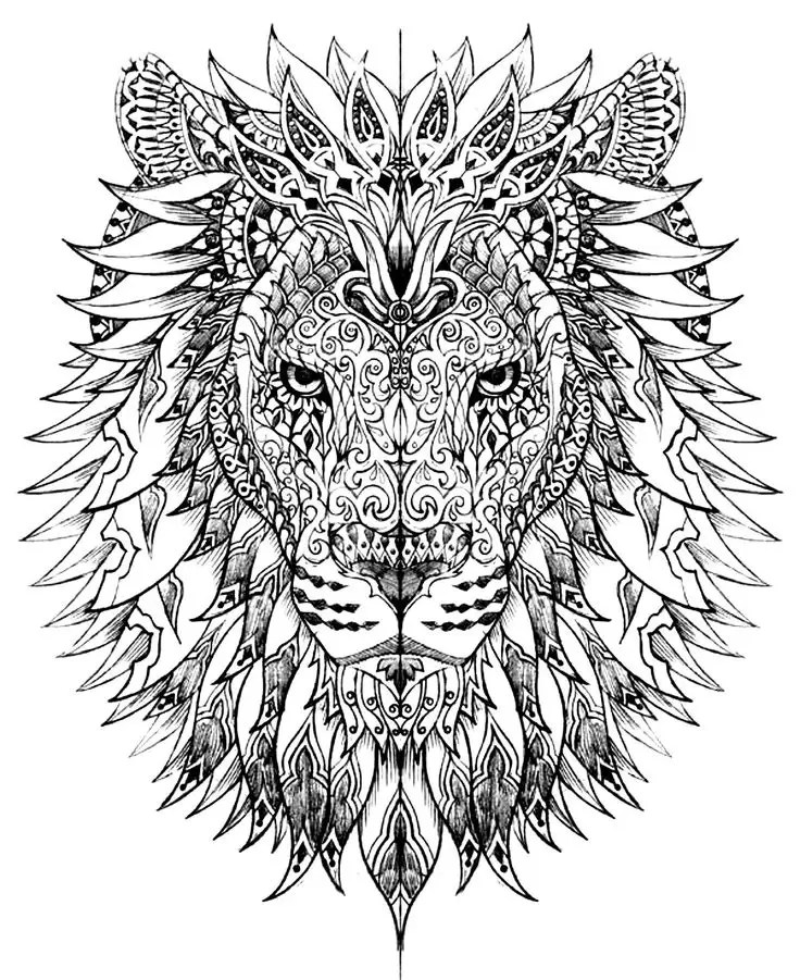 adult coloring pictures lions adult colouring book pages lion adult