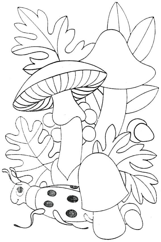 mushroom autumn coloring pages amp coloring book