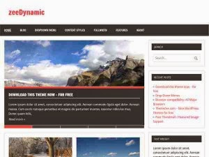 zeedynamic_wordpress_theme