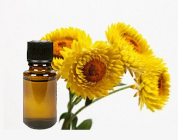 Image result for helichrysum oil
