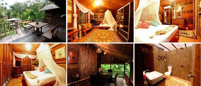 Penang Fig Tree Hill Resort Lemongrass Traditional Villa
