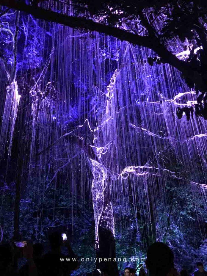 Penang Avatar Secret Garden