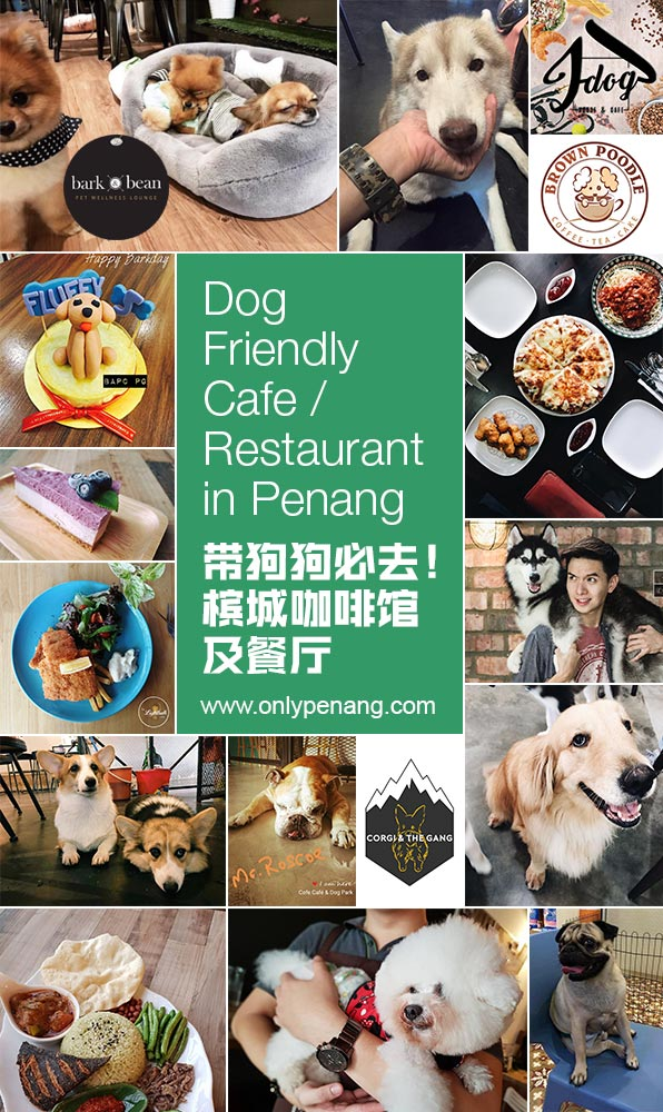 Dog-Friendly Cafe, Dog-friendly Restaurant in Penang