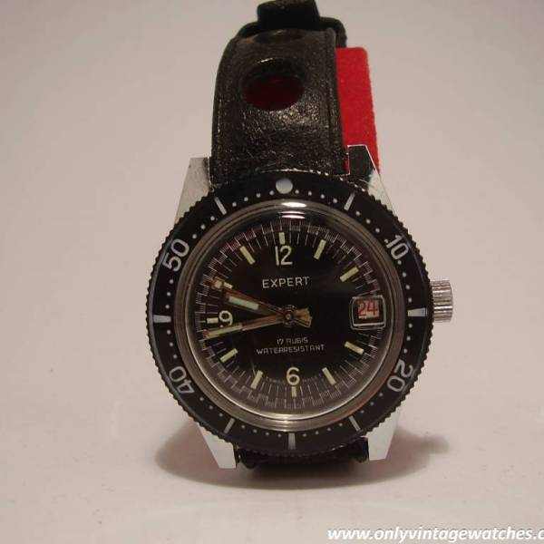 Expert divers watch 3