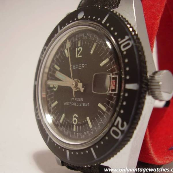 Expert divers watch 1