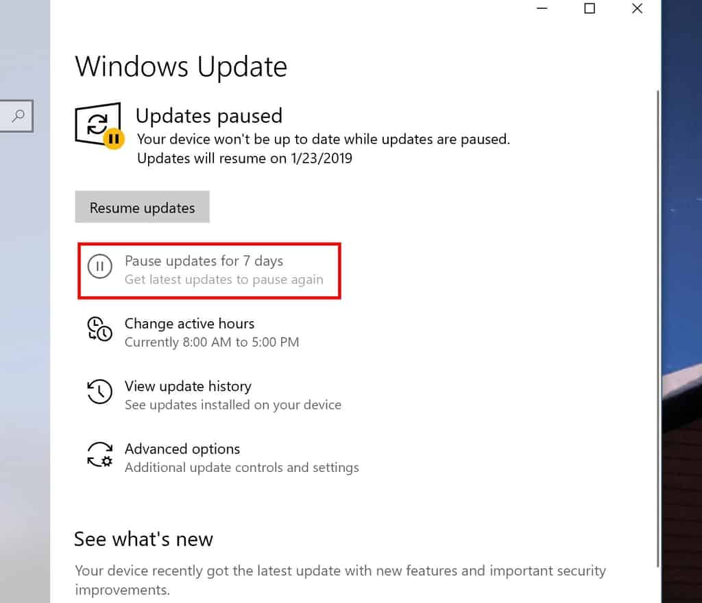 Pausing updates in Windows 10 19H1