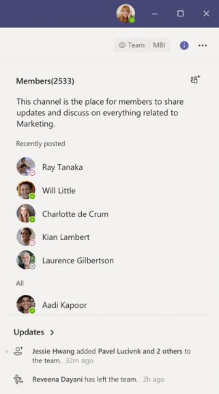 Microsoft Teams information pane