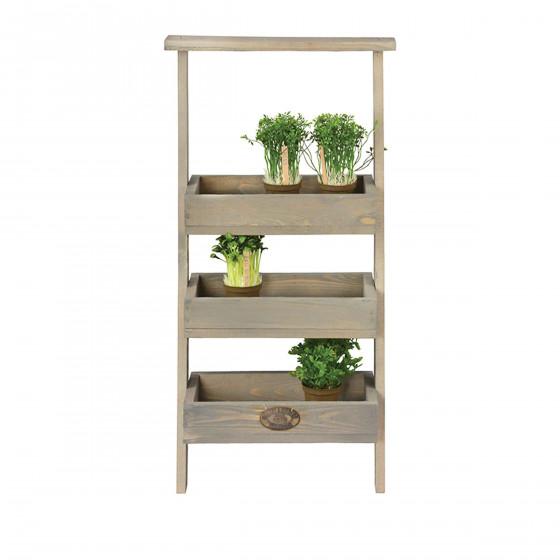etagere a plantes echelle