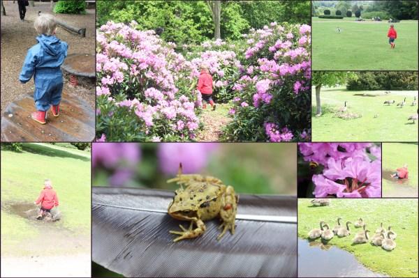 2014-05-25 Clumber Park