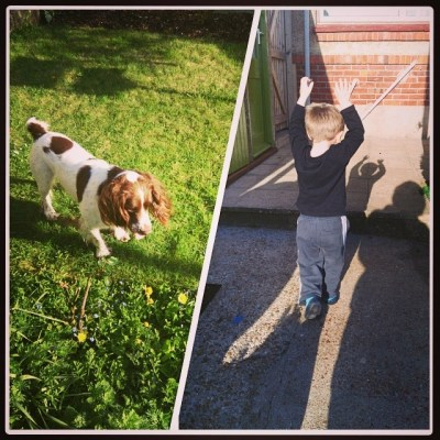 Henry-dog and his tormentor