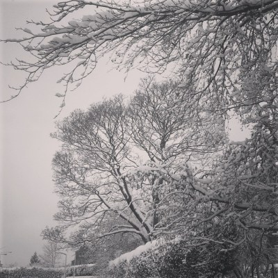 Snow 2 years ago #snaphappybritmums.