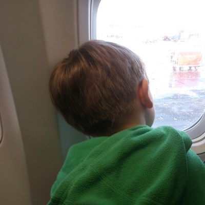 My current view. A curious Sqk on plane to Tenerife #adoption