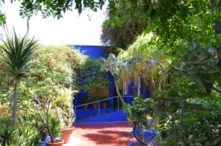Balade dans les jardins de Majorelle - on sunday mornings
