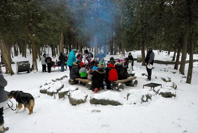 Hilton Falls Campfire Pit