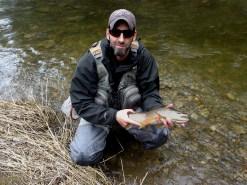 Credit River opener brown trout.