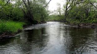 Small stream.