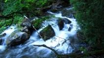 Small river rapids.
