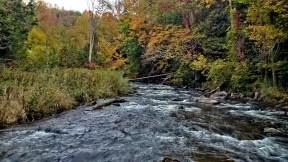 Credit River