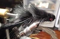 Black Silk Kitty