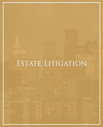 Civil Litigator North York