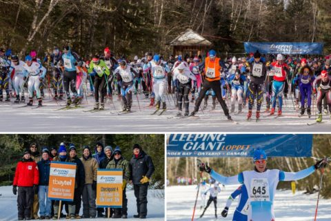 Loppet collage