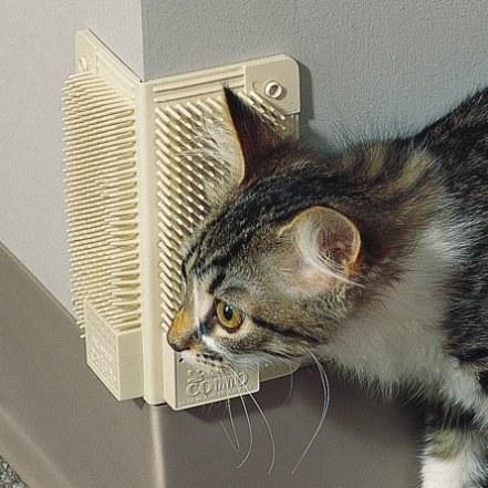 منتوجات لراحة القطط و حماية المنزل من عواقب إقتنائها ! (11)