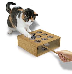 منتوجات لراحة القطط و حماية المنزل من عواقب إقتنائها ! (13)