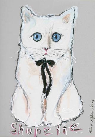 مكياج الأميرة القطة Shupette (3)