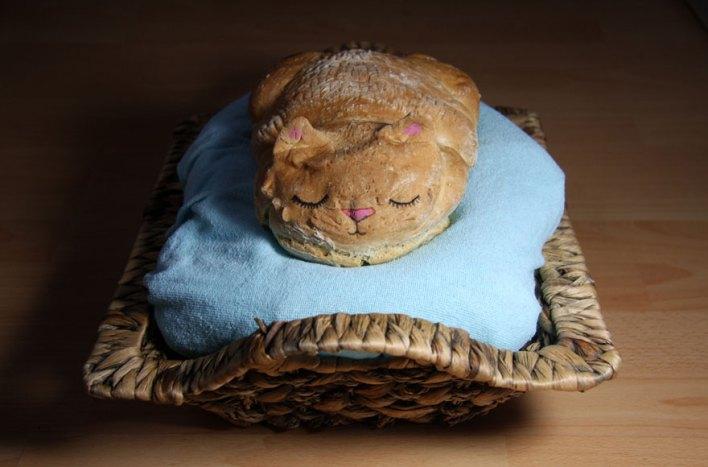 خبز على شكل قطط