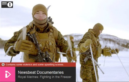 Royal Marines: Fighting in the Freezer