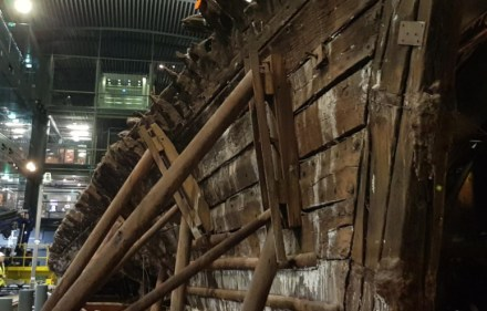 Preview – Skeletons of the Mary Rose