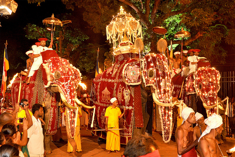 Image result for sri lankan people and culture