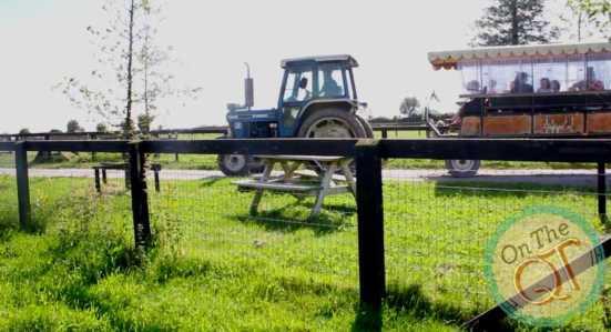 Rumelys Open Farm, Cork