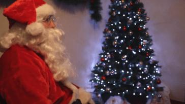 Christmas Wonderland at The Farm Grenagh