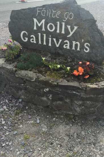 Molly Gallivans