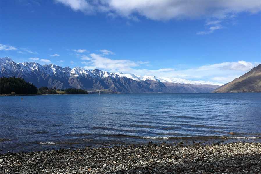 New Zealand Blogger