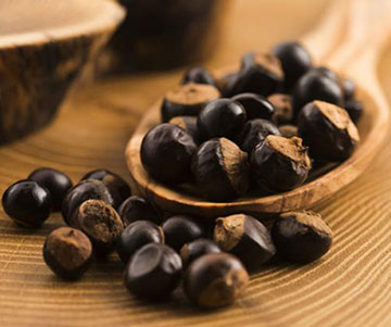 Seeds of Guarana Plant As Appetite Suppresants