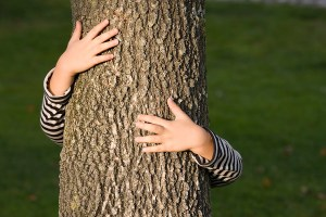 bigstock_Huging_A_Tree_3902388