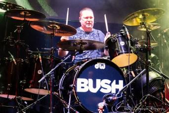 Bush-2698