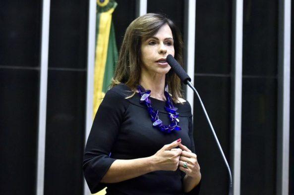 Deputadas federais unem esforços e defendem direitos das mulheres na resposta do Brasil à pandemia Covid 19/participacao politica onu mulheres noticias igualdade de genero direitosdasmulheres covid19