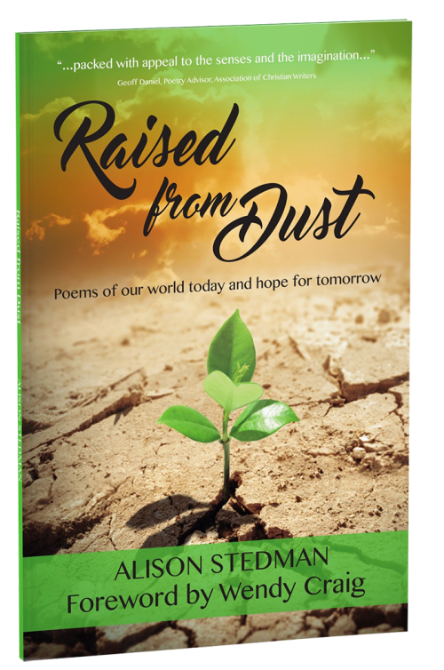 Raised from Dust_3D