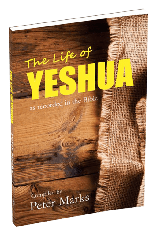 The Life of Yeshua_3D