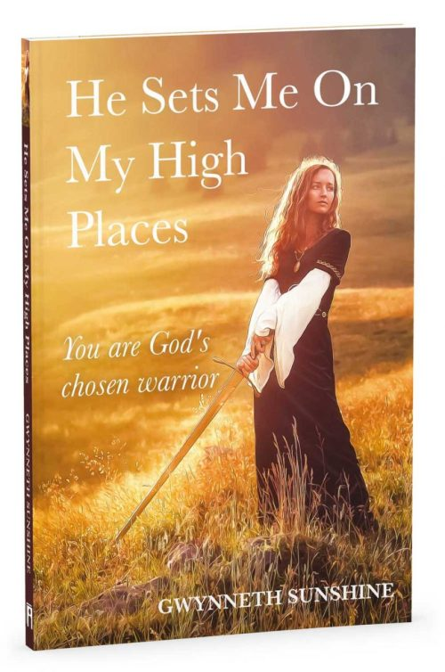 He Sets Me on My High Places 3D Cover