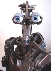 Domo Robot from MIT