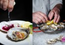 Oyster Thursdays Promotion at Cook & Brew, The Westin Singapore – Dine with a View
