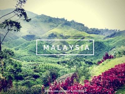 Malaysia Travel Ooaworld Rolling Coconut photo Ooaworld