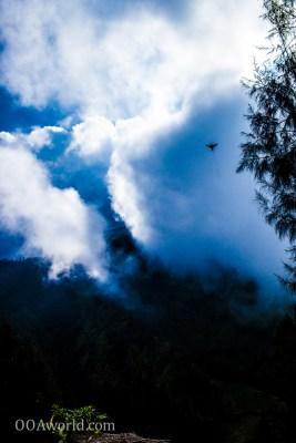 Photo Sky Bird Bromo Indonesia Ooaworld