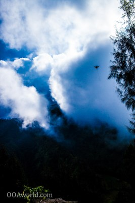 Photo Sky Bird Bromo Indonesia Ooaworld