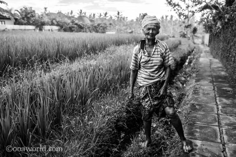 Ubud Portrait Field Worker photo Ooaworld